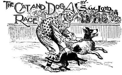 La carrera del perro y el gato