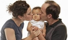 Ayoyo a la adopción las rozas madrid pozuelo majadahonda