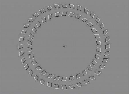 Mirando fijamente al punto central se crea la sensación de que los círculos giran