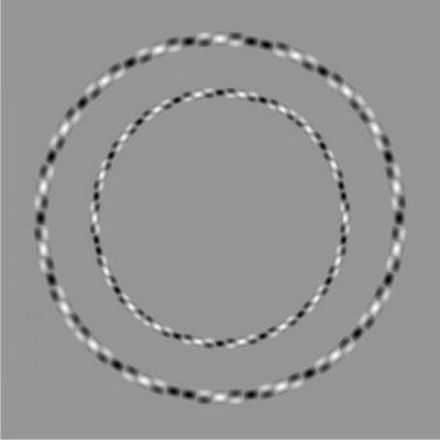 Parece una espiral cuando en realidad son círculos concéntricos