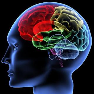 sincronizacion hemisferios cerebrales Madrid